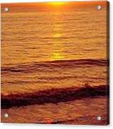 Golden - Sunrise Acrylic Print