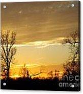 Golden Sunset 61 Acrylic Print
