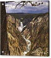 Grand Canyon Of The Yellowstone Acrylic Print