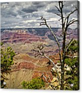 Grand Canyon View From The South Rim Acrylic Print