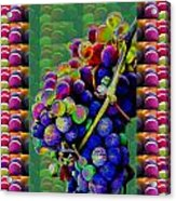 Grapes Fruit Pattern Health Background Designs  And Color Tones N Color Shades Available For Downloa Acrylic Print