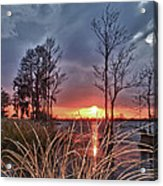 Grassy View Sunset Acrylic Print