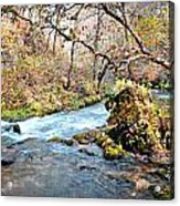 Greer Spring  Acrylic Print