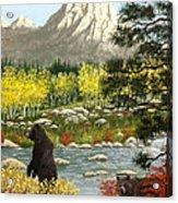 Grizzly Creek Acrylic Print