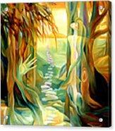 Guiding Path Acrylic Print