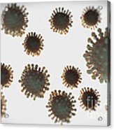 H1n1 Virus Particles Acrylic Print