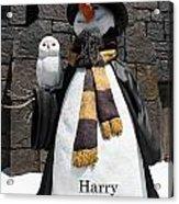 Harry Christmas Acrylic Print