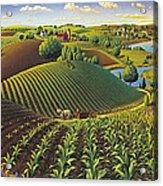 Harvest Panorama  Acrylic Print