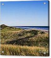 Head Of The Meadow Beach Acrylic Print