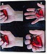 Heart In Hand Acrylic Print