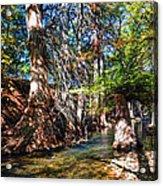 Hint Of Fall Acrylic Print