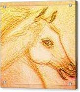 Horse Of The Sun Acrylic Print