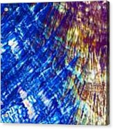 Hydroquinone Microcrystals Color Abstract Art Acrylic Print