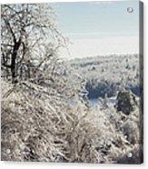 Ice Storm - 2013 Acrylic Print by Jim Walker
