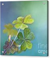 In Love With Nature Acrylic Print