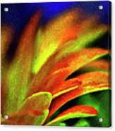 In The Heat Of The Night Acrylic Print