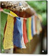 India, Ladakh, Alchi, Colorful Buddhist Acrylic Print