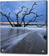 Into The Blue Acrylic Print by Debra and Dave Vanderlaan