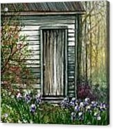 Iris By Barn Acrylic Print
