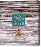 Ironic Street Sign  Acrylic Print