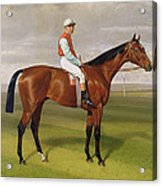 Isinglass Winner Of The 1893 Derby Acrylic Print