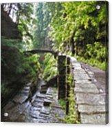 Ithaca Gorge Acrylic Print