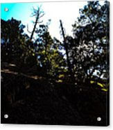 John Muir Trail Acrylic Print
