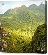Jungle Landscape Acrylic Print