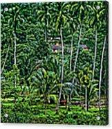 Jungle Life Acrylic Print