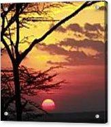 Kenyan Sunset Acrylic Print