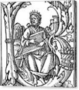 King David (d Acrylic Print