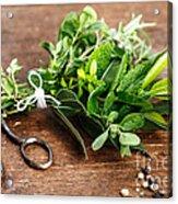Kitchen Herbs Acrylic Print
