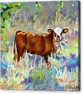 Knee High In Happiness Acrylic Print