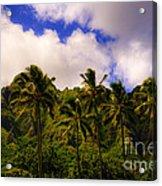 Koolau Mountains Acrylic Print