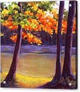 Lake Trees Acrylic Print by MaryAnn Stafford
