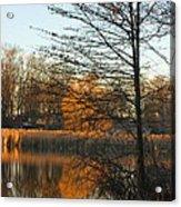 Last Of The Sun Acrylic Print