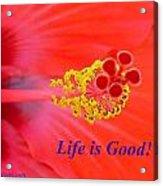 Life Is Good Acrylic Print