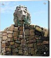 Lion Water Fountain. Acrylic Print