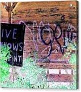 Live Minnows Acrylic Print