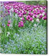 Longwood Gardens, Spring Flowers Acrylic Print