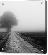 Lost In The Fog Acrylic Print
