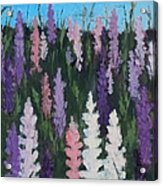 Lupines - Art By Bill Tomsa Acrylic Print