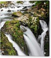 Lush Waterfall Olympic National Park Acrylic Print