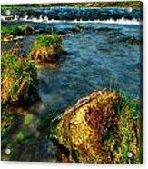 Lwv20042 Acrylic Print