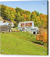 Maine Farm On Side Of Hill In Autumn Acrylic Print