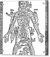 Man Of Signs, 1495 Acrylic Print