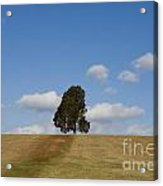 Manassas National Battlefield Park Acrylic Print