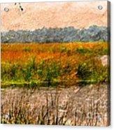 Marsh Land Acrylic Print