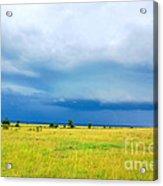 Masai Mara Kenya Acrylic Print