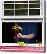 Mature Woman Cutting Flowers In Window Acrylic Print